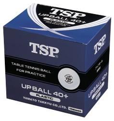 "TSP ""Upball 40+ Training"""
