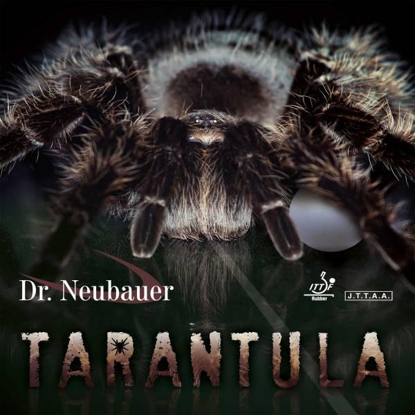 "Dr. Neubauer ""Tarantula"""